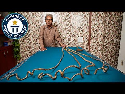 Longest fingernails on a single hand (ever) - Guinness World Records