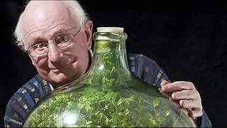40 летний сад в ЗАКУПОРЕННОЙ бутылке! Невероятно!