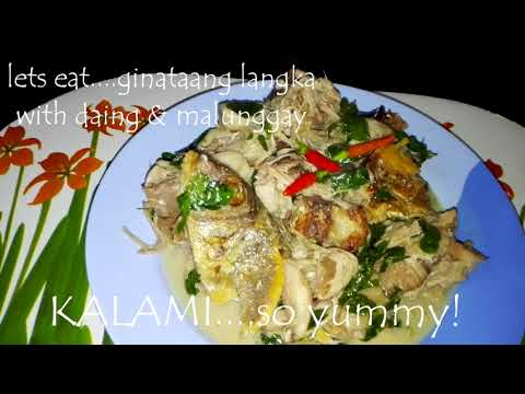 Cooking in the garden : Ginataang Langka with daing na isda at malunggay : jackfruit in coconut milk