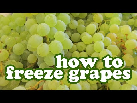 How To Freeze Grapes You Can Store Freezer - Freezing Seedless Green Grape Fruit Preserves Jazevox