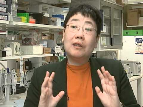 Breast Cancer Patient's Genetic Profile Guides Treatment Options