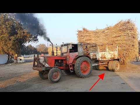 Power of Belarus 510 Tractor, Powerful Belarus 510 Pulling Sugarcane Trolley