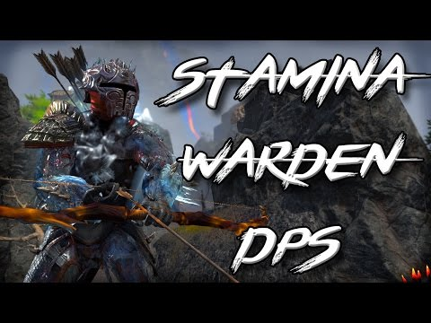 ESO Morrowind - STAMINA WARDEN BUTCHER Build (Elder Scrolls Online StamDen PvE Build)