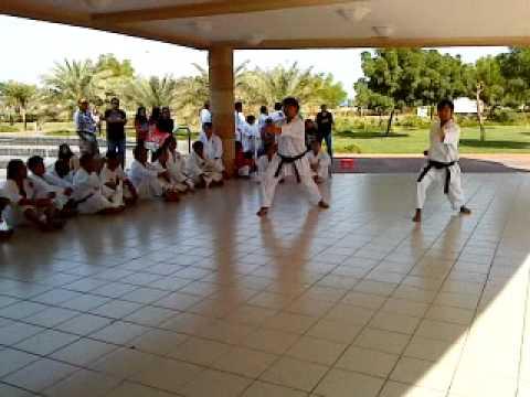 basic moves - shotokan karate