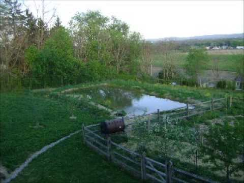 Episode 66 The Food Production Podcast (Part 4 Permaculture Design)