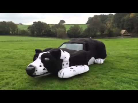 Barking Mad! Farmer creates sheepdog car