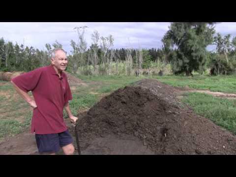 Rosedale Organic Citrus Farm - Addo - South Africa