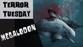 Can Megalodon Still Be Alive?