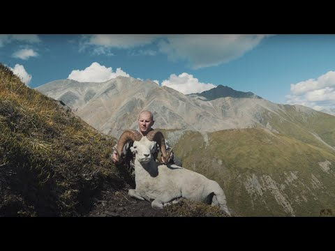 Dall Sheep - Nahanni Butte: The Last Hunt