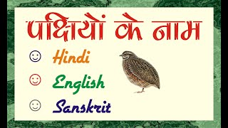 Birds names in Hindi and English | पक्षी जगत