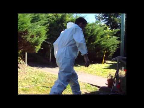 Wet Basement Sewer Clean Up - Burnaby Job Blog