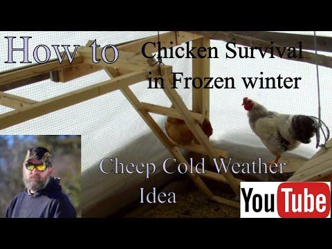 Cold Weather Chicken coop that got me through the sub zero winter in Northern Wisconsin