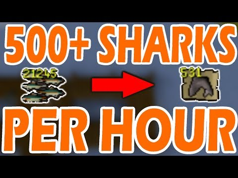 [OSRS] New MINNOW UPDATE | 500+ SHARKS PER HOUR