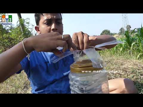 Fish Trapping | Believe This Bottle Fishing? Unique Fish Trapping | New Technique Of Catching Fish