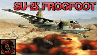 Su-25 Frogfoot - The Russian Flying Tank