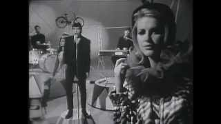 The Animals - Bring It On Home To Me (Live, 1965) UPGRADE ♫♥50 YEARS