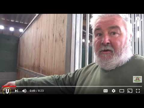 Good Horse Advice About Today's Horse Owners - Discipline Is Not A Bad Word