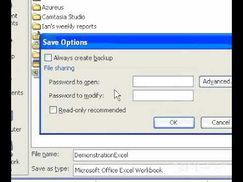 Microsoft Office Excel 2003 Secure a workbook with a password