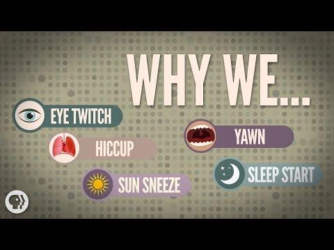 5 Weird Involuntary Behaviors Explained!