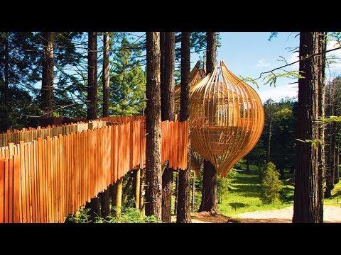 Free Standing Tree House Platform