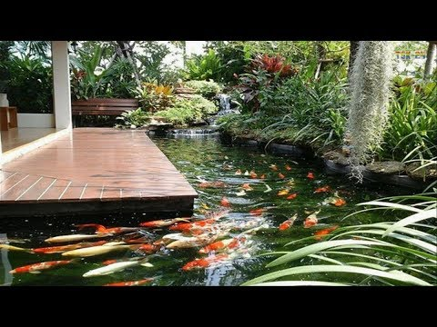 Small Garden Ideas - Cool Backyard Pond Design Ideas