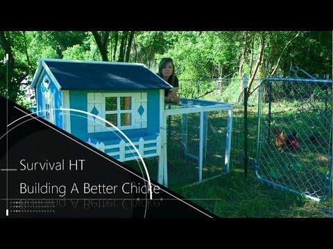 Building A Better Chicken Yard