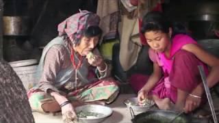 Cooking organic mountain food in traditional way ll Organic food recipe