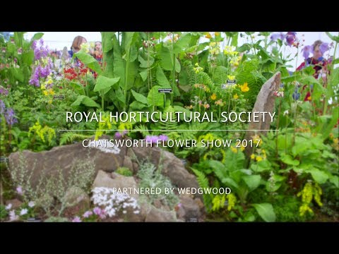 RHS Chatsworth Flower Show 2017 | Kevock Garden Plants | Good plants for a changing climate