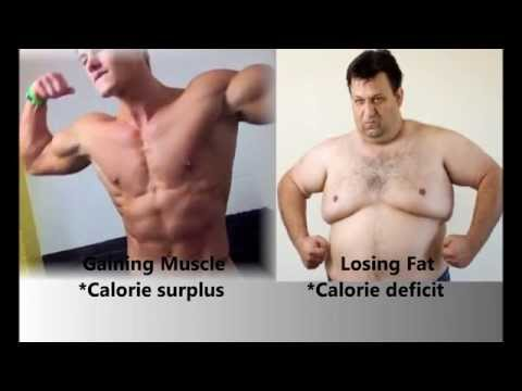 How To Gain Muscle Weight And Lose Fat Weight