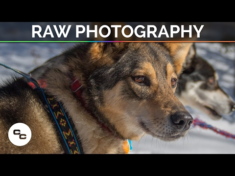 RAW Photography vs JPEG - Comparison and Tutorial