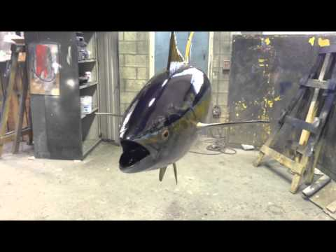 Yellowfin Tuna - 360 ViewGray Taxidermy Fishmounts, Custom fish reproductions
