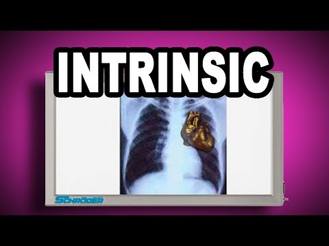 Learn English Words: INTRINSIC - Meaning, Vocabulary with Pictures and Examples