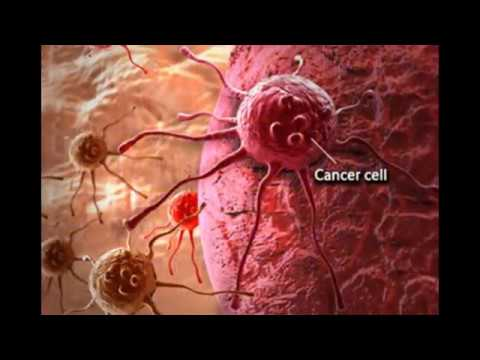 What is cancer and how to prevent ?