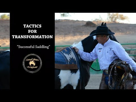 Tactics For Transformation with Richard Winters & Weaver Leather - Tips for Successful Saddling