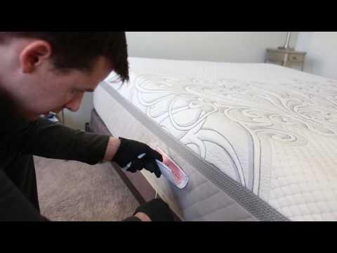 Chicago Bed Bug DNA Inspection by Landmark Pest Management