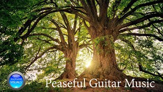 peaseful Guitar Music  WITH VISUALS'📚 Mental relaxation to study and focus on daily activities.