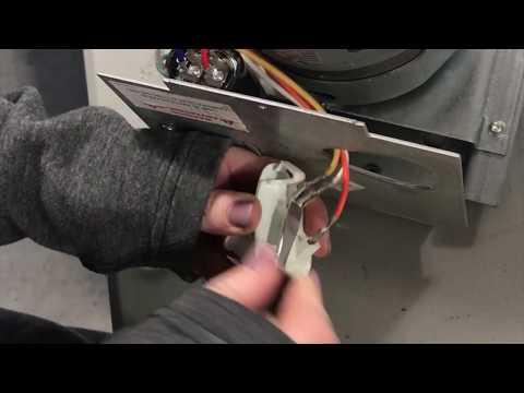 How To Replace Light Socket Wayne Dalton Opener Quantum, Classic Drive, ProDrive 269028