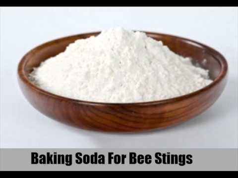 8 Effective Home Remedies For Bee Stings In Children