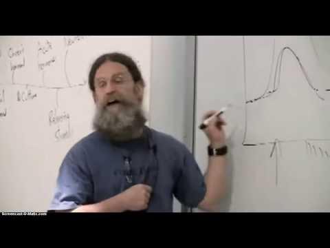 Sapolsky - Dopamine, Anticipation, & Relationships