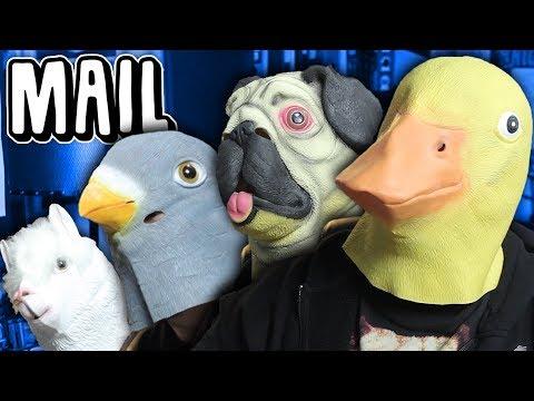 ARTWORK & ODDITIES 2 (Mail Vlog)