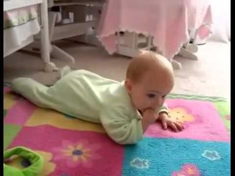 Dog Teaching Baby to Crawl
