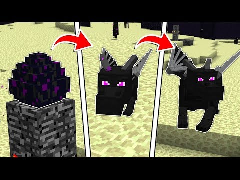 LIFE OF A MINECRAFT ENDER DRAGON!!