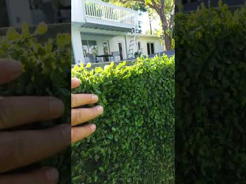 Artificial turf and Artificial ivy on balcony for home in Miami,  Florida.  Artificial ivy wall.