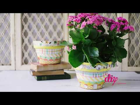 DIY Flower Pots: Give Life to Your Old Clay Plant Holders