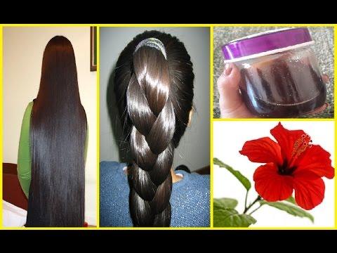 Hibiscus Hair Oil for Fast Hair Growth | get very Long Hair, Soft Hair, Smooth Hair and Healthy Hair