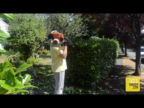 The Complete Guide to Hedge Trimming at Home