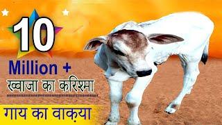 गाय का वाक़या__Gaye Ka Waqya__ Khwaja Ka Karishma__Ghareeb Nawaz__Complete Story