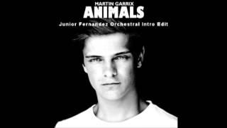 Martin Garrix - Animals (Junior Fernández Orchestra Intro Remix)