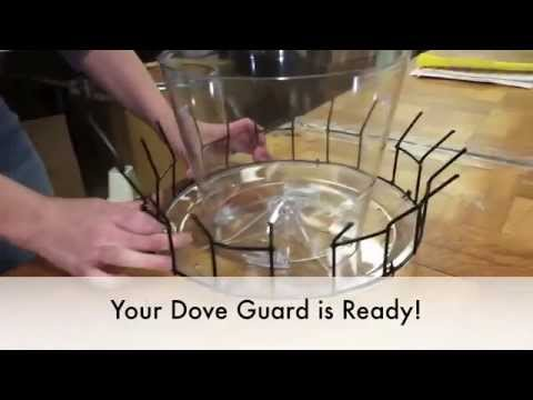 Dove Guard - stop doves from getting into your feeder