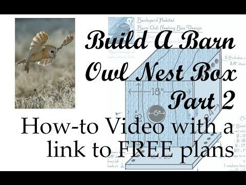 Build An Owl Nest Box, Part 2 | This Home-Studio